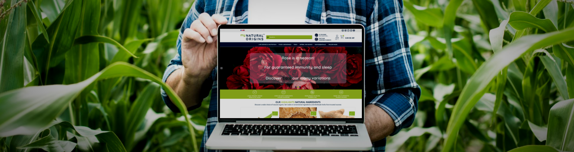 Discover new search functions on mynaturalorigins.store e-platform